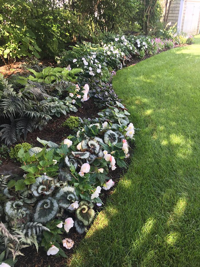 Nantucket Gardener, Garden Design and Gardening by Gauvin ...